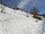 Nelle vicinanze dell'Alpe di Mageno
