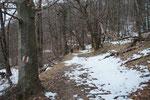Sentiero per il Passo Forcola
