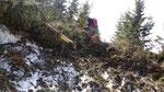 Sul sentiero che collega la Capanna Brogoldone all'Alp de Martum affrontiamo diversi alberi e detriti trascinati da slavine