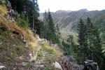 Sentiero Corno - Passo Predèlp