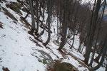 Sentiero Alpe di Naccio - Termine