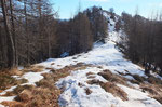 Sulla crestina per l'Alpe Morisciolo