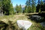 Sentiero che dall'Alp di Stabveder ci conduce alla macchina (1827 m)