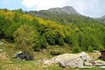 Alpe di Carpögna con il Pizzo Castello