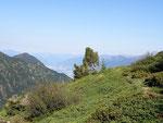 Sentiero Alpe Poltrinetto - Alpe Poltrinone