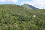 Dalla strada per la Capanna Monte Bar, il Camoghè ed il Rifugio di Piandanazzo