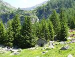 Alpe di Compiett 1516 m        (Biasca)