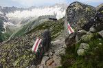 Bergseehütte con il Dammagletscher