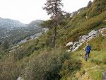 Sentiero Alpe d'Albion - Laghi di Roggio