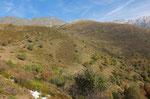 Alpe Quadra e Testa Fontai