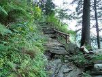 Sul sentiero per l'Alp de Barna