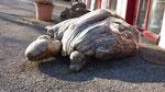 "La ""famosa"" tartaruga di Aurigeno"