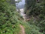 Ponte sopra la Calancasca