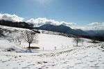 Alpe Vicania 704 m