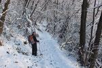 Nel bosco direzione Albio