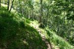 Sentiero per Melirolo