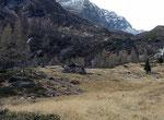 I Cebi - Monti di P. San Giacomo (GR) 1720 m