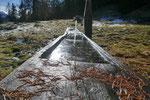 Fontana ghiacciata sul sentiero per la Capanna Pian d'Alpe