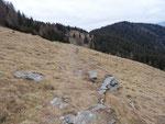 Sentiero Alpe della Costa - Sasso Guidà