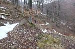 Sentiero per il Monte Saletta