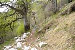 Sentiero per Cangili