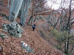 Sentiero Creda 800 m - Alpe Bolla