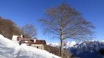 Cortone 951 m