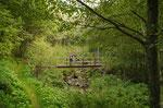 Ponte sul Ri dei Piotti
