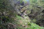 Sentiero Airon - Costa Piana
