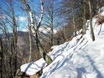 Sul sentiero trà Bollisce e i Monti di Loga
