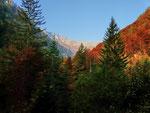 Zona Piano delle Cascine 1213 m