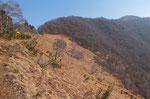 La Bassa e Monte Ferraro
