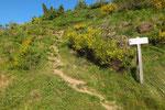 Dal posteggio saliamo all'Alpe Rompiago