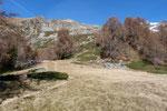 Vicino al Rifugio Alpe Costa