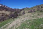 Sentiero per l'Alpe Pesciò