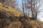 In prossimità della cresta per il Monte Bronzone