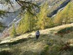 Salita per l'Alpe di Porcaresc
