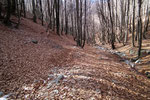 Sentiero Termine - Bordei
