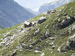 Alpe di Lago 2089 m - Valle Santa Petronilla