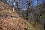Sentiero per Erbonne