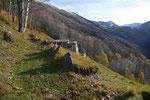 Proseguiamo per l'Alpe Fossada