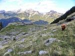 Alp de Barna 1742 m