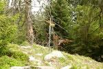 Deviazione per Lumino via Alpe Stabbiello - Vatiscio