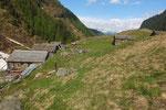 Alpe di Pulgabi 1611 m