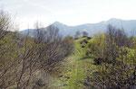Monte Sirti 1344 m