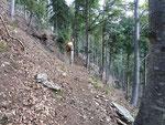 Sentiero Monti di Ruscada - Alpe Pisciarotto