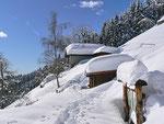 Monti di Savorù 1300 m