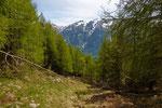 Salita all'Alp Lughezzon