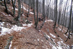 Sentiero Dorca - Alpe di Naccio