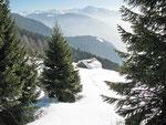 Alpe di Domas